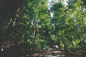 Bukit Timah Nature Reserve is part of the List of Nature Reserves Parks in Singapore