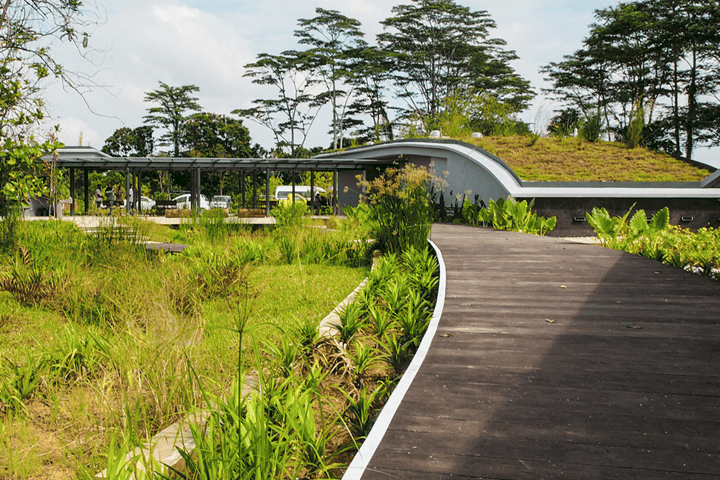 Kranji Marshes is 10 Best Singapore Parks and Natural Spaces