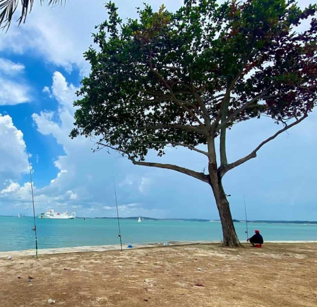 Changi Beach is The 10 Most Beautiful Beaches of Singapore