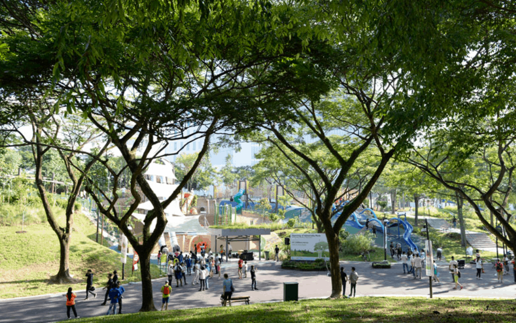 Admiralty Park is The Largest Playground In Singapore with most slides for family and intra generation bonding