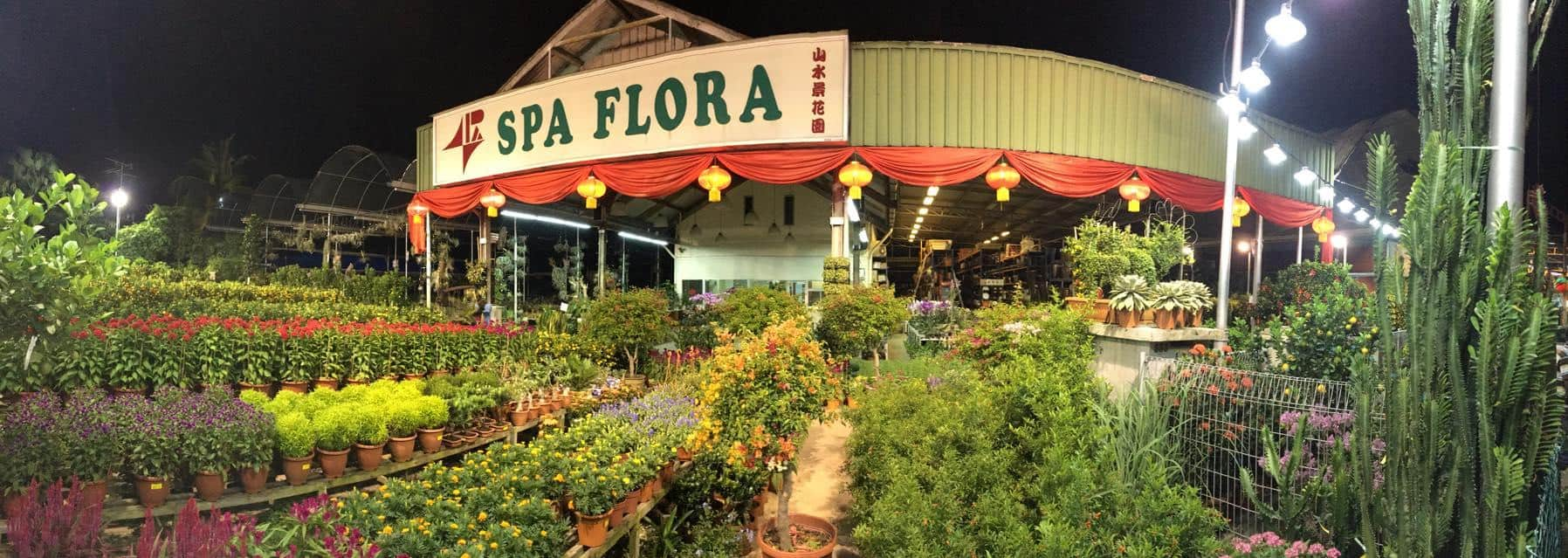 Spa Flora is 10 Popular Plant Nurseries In Singapore To Buy Gorgeous Plants for CNY Chinese new year, hari raya, christmas, wedding gift, spa flora bedok,