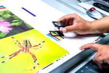Where to Print in Singapore, SG Online Printing Service - 24-Hour Availability, Lowest Bulk Price Guaranteed for printing, One Stop Solution For All Printing & Photocopying Service, Where can I go to print a document?, How much does it cost to print in Singapore?