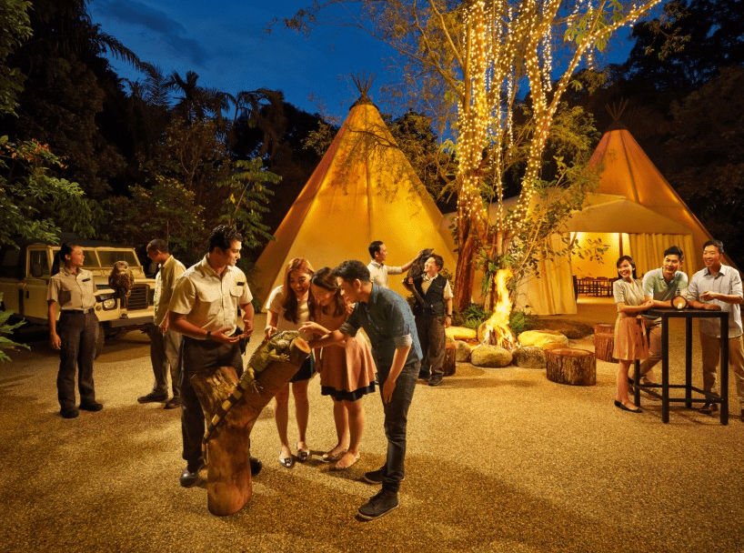 The Singapore Night Safari is the Top 10 Romantic Date Spots in Singapore, Places to go with girlfriend Singapore, Where should I take my girlfriend on a first date?, Where should I take my girlfriend?, Where should I take my teenage girlfriend on a date?