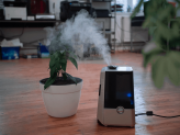 Best Humidifier in Singapore 2021